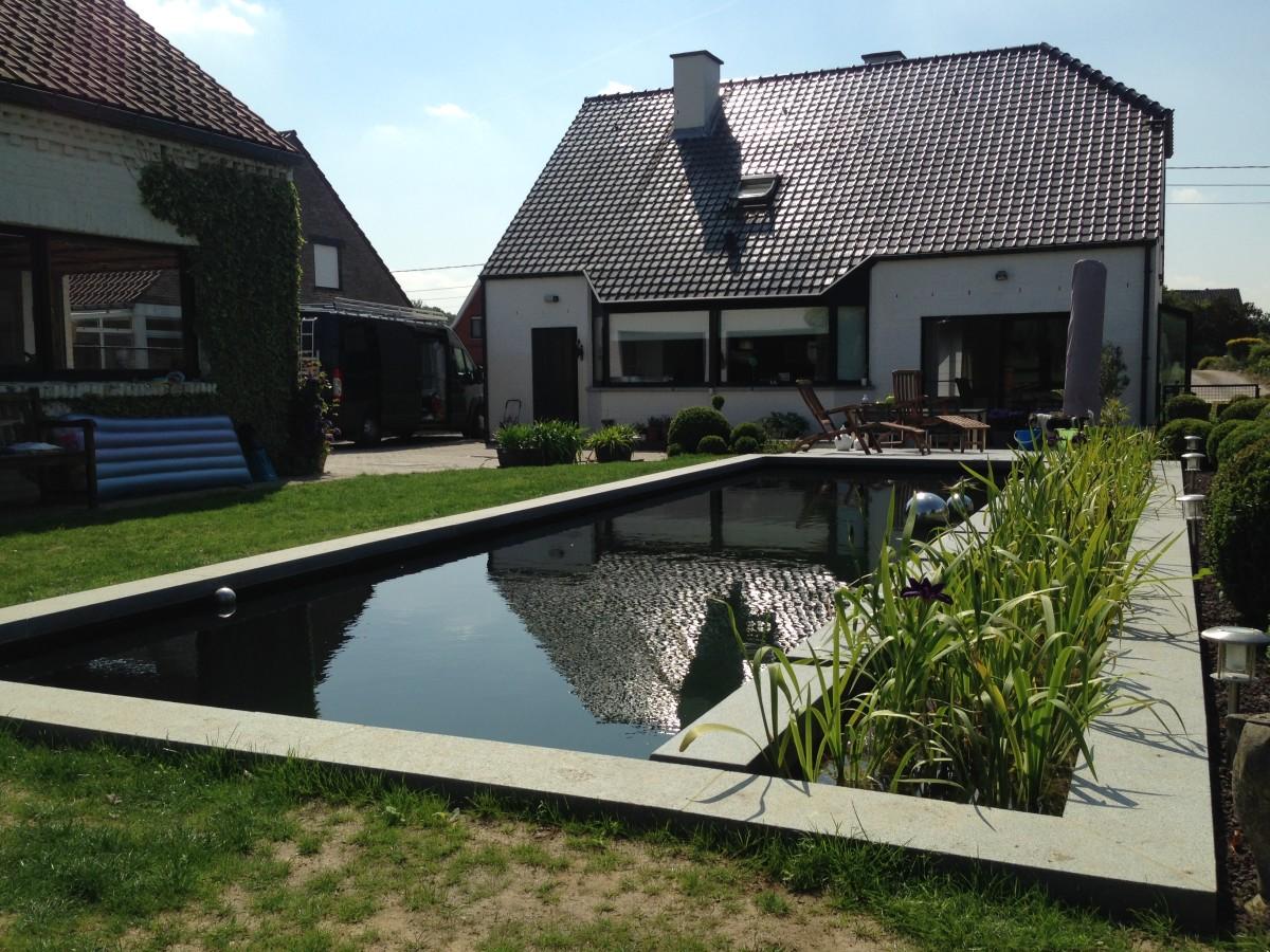 Prachtige zwemvijver in bekkevoort de vijvertuin for Kostprijs zwemvijver aanleggen