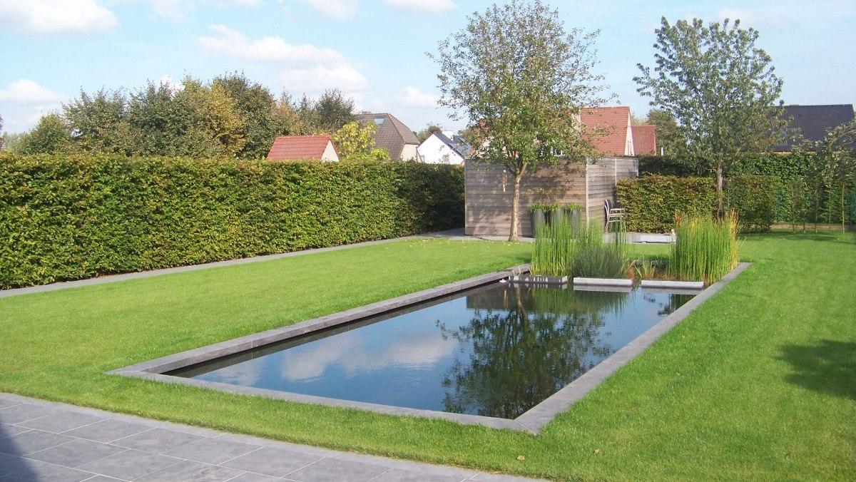 Biozwembad met siervijver te hoeselt de vijvertuin for Kostprijs zwemvijver aanleggen