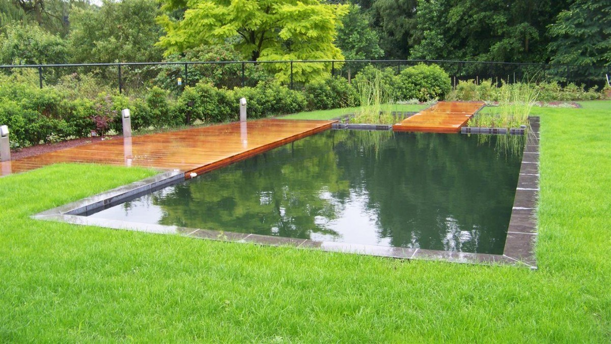 zwemvijver te molenstede de vijvertuin